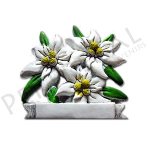 Imanes resina Flores Edelweiss