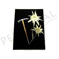 Cartolina flor de nieve natural con piolet