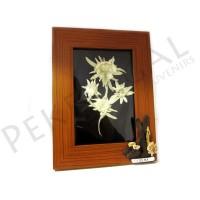 Marco madera con flor de nieve e iman
